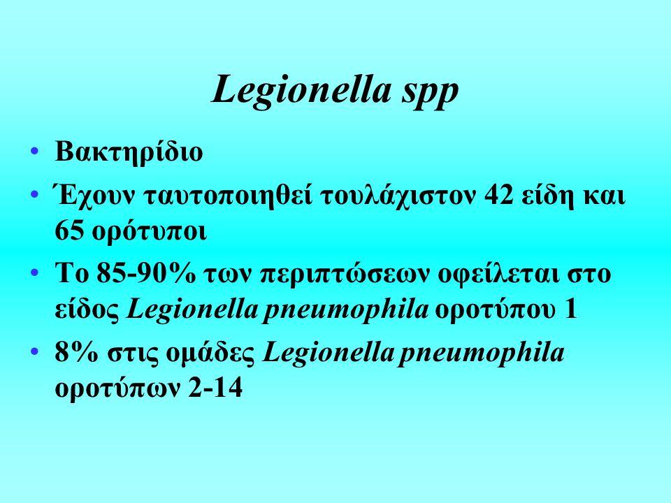 Legionella spp Βακτηρίδιο