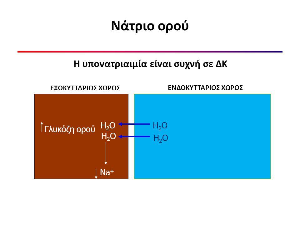 Νάτριο ορού Η υπονατριαιμία είναι συχνή σε ΔΚ H2O H2O Γλυκόζη ορού H2O