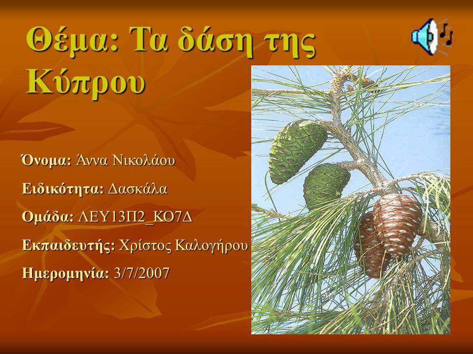 Θέμα: Τα δάση της Κύπρου