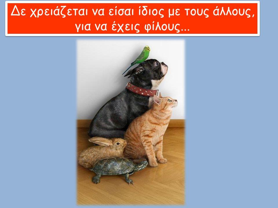 Δε χρειάζεται να είσαι ίδιος με τους άλλους, για να έχεις φίλους...