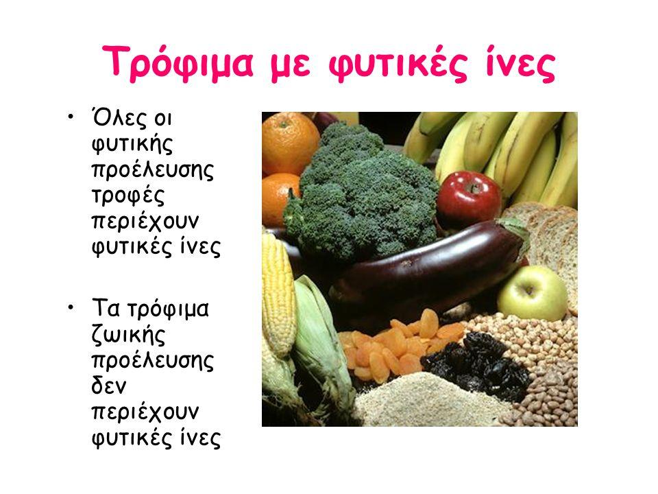 Τρόφιμα με φυτικές ίνες
