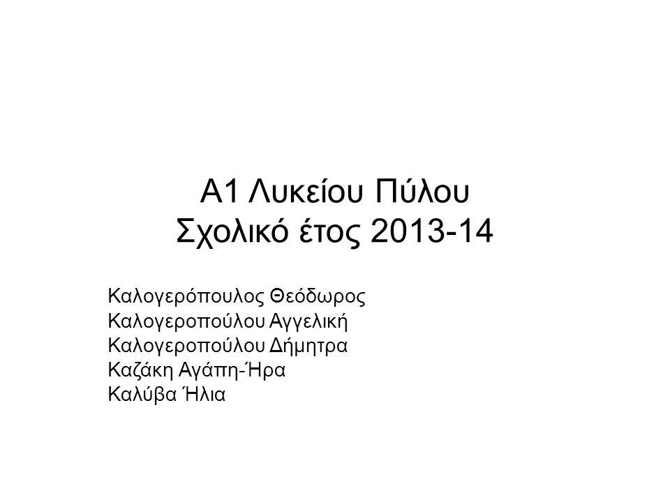 Α1 Λυκείου Πύλου Σχολικό έτος 2013-14