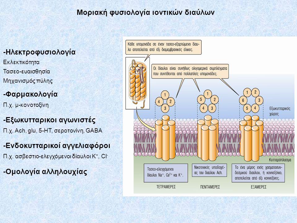 Μοριακή φυσιολογία ιοντικών διαύλων