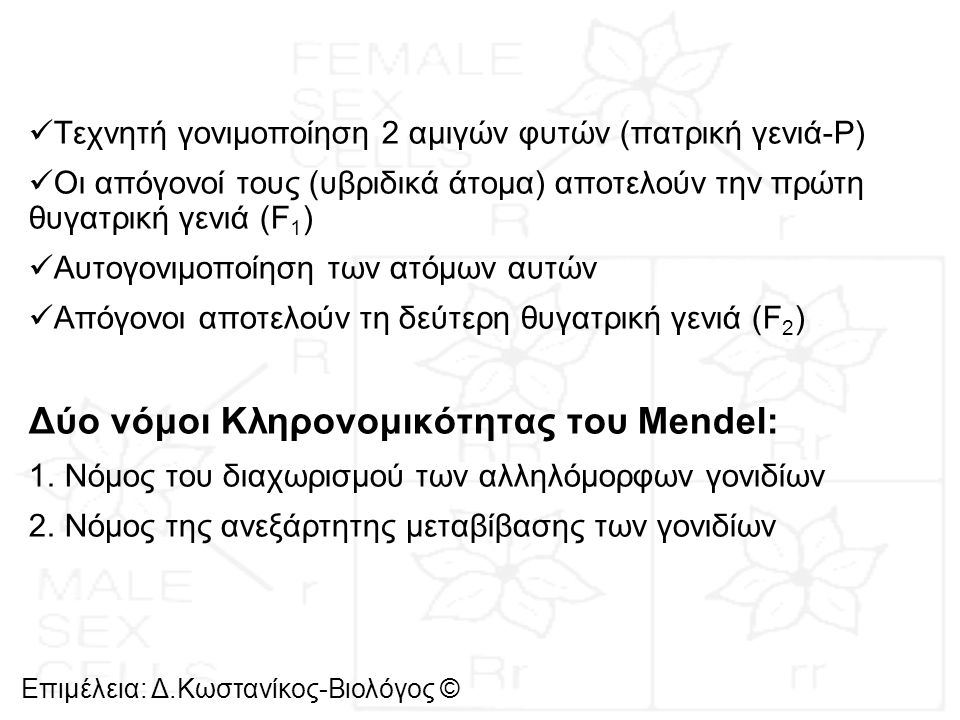 Δύο νόμοι Κληρονομικότητας του Μendel: