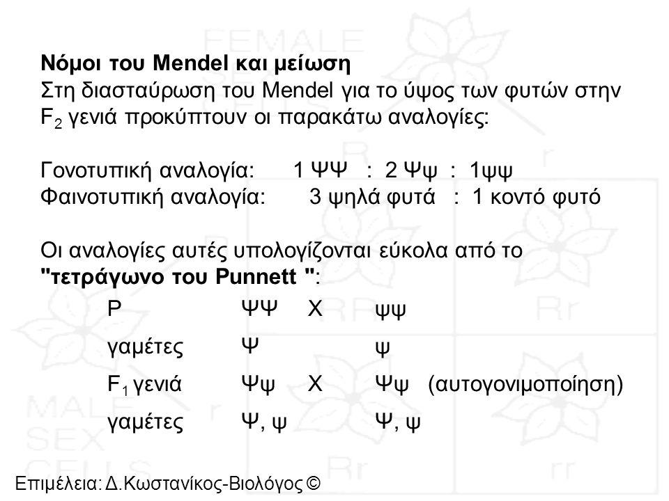 Νόμοι του Mendel και μείωση