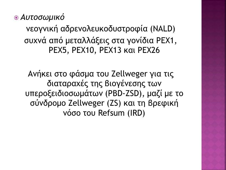 νεογνική αδρενολευκοδυστροφία (NALD)