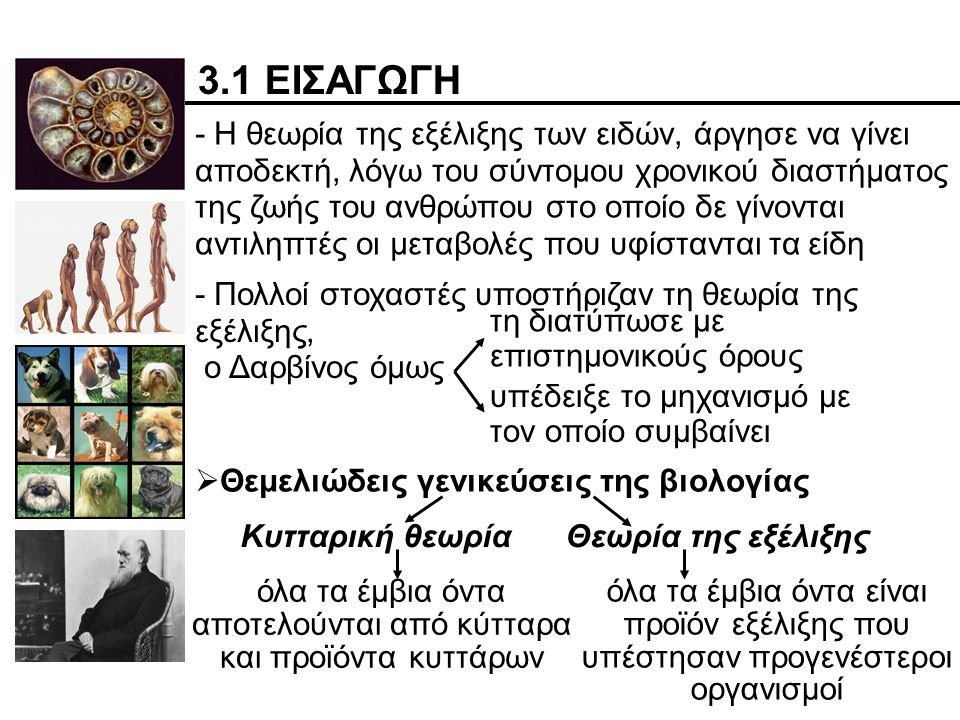 3.1 ΕΙΣΑΓΩΓΗ