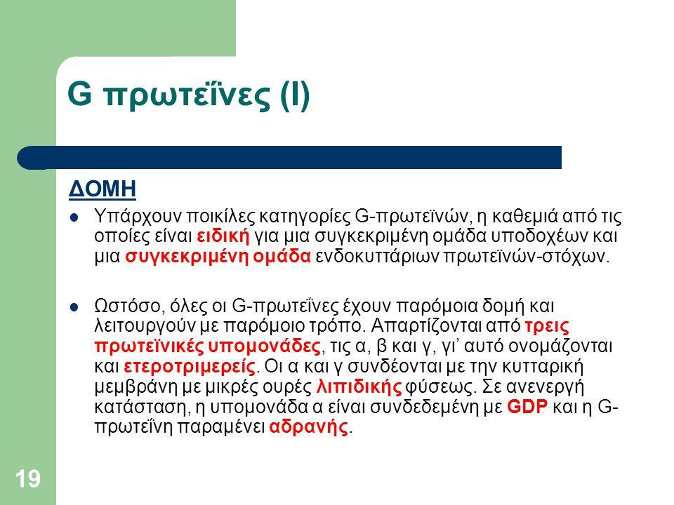 G πρωτεΐνες (I) ΔΟΜΗ.