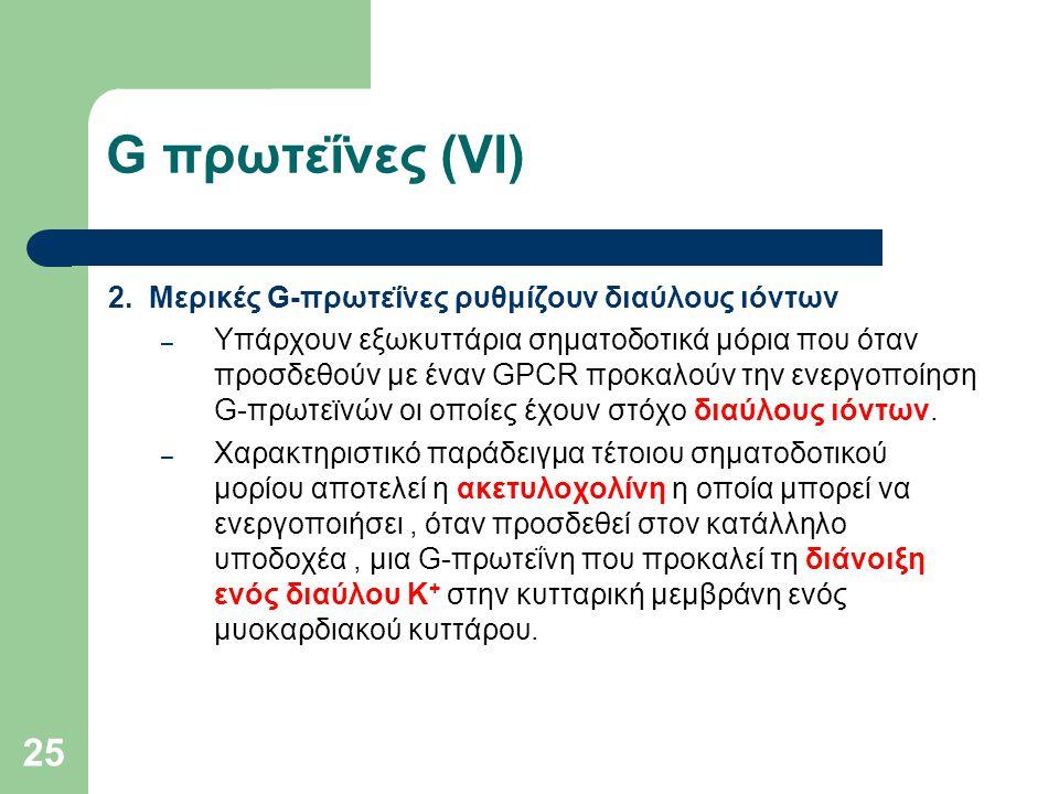 G πρωτεΐνες (VI) 2. Μερικές G-πρωτεΐνες ρυθμίζουν διαύλους ιόντων