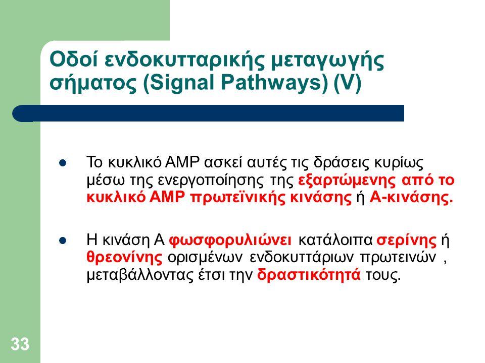 Οδοί ενδοκυτταρικής μεταγωγής σήματος (Signal Pathways) (V)