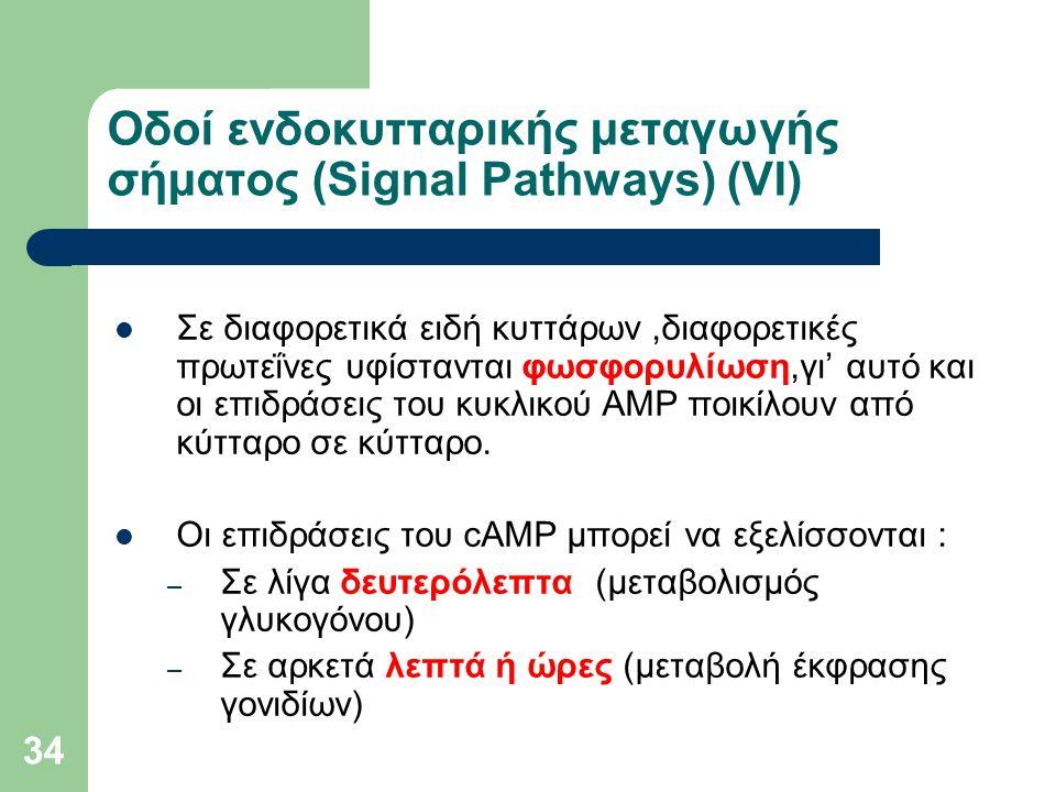 Οδοί ενδοκυτταρικής μεταγωγής σήματος (Signal Pathways) (VI)