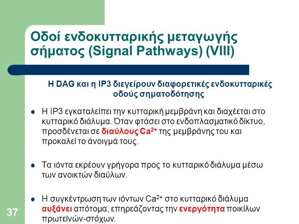 Οδοί ενδοκυτταρικής μεταγωγής σήματος (Signal Pathways) (VIIΙ)