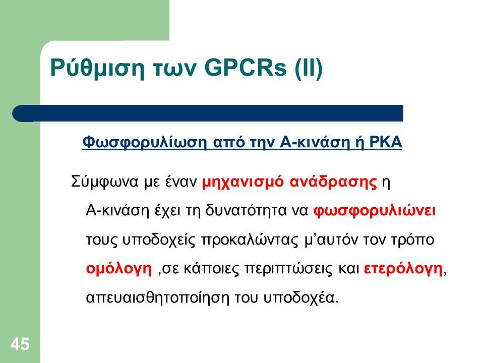 Ρύθμιση των GPCRs (ΙI) Φωσφορυλίωση από την Α-κινάση ή ΡΚΑ