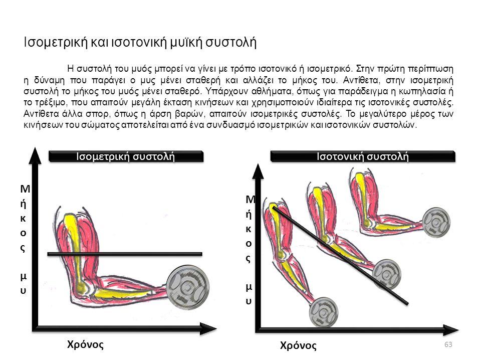 Ισομετρική και ισοτονική μυϊκή συστολή