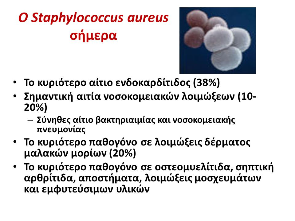 O Staphylococcus aureus σήμερα