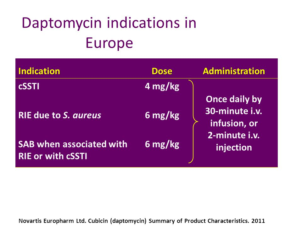 Daptomycin indications in Europe