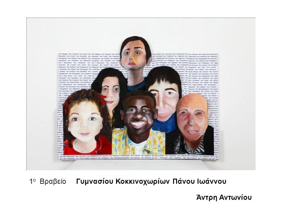 1ο Βραβείο Γυμνασίου Κοκκινοχωρίων Πάνου Ιωάννου