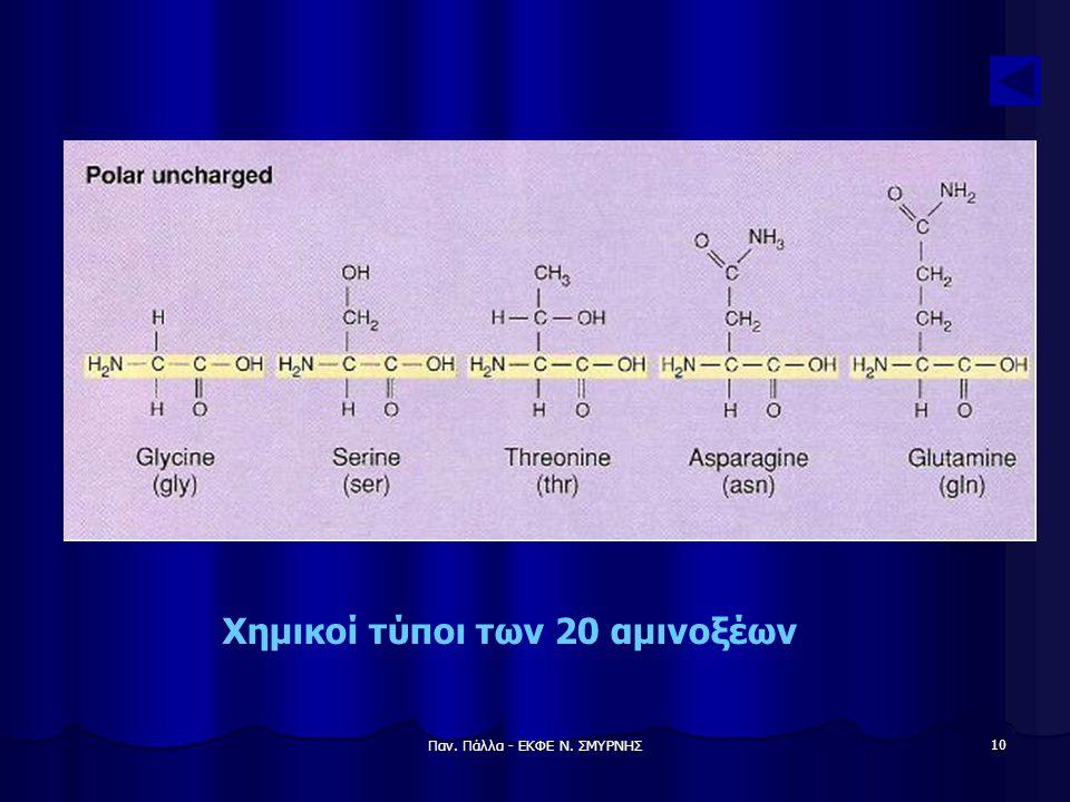 Χημικοί τύποι των 20 αμινοξέων