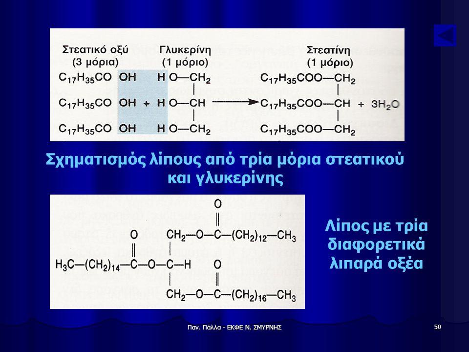 Σχηματισμός λίπους από τρία μόρια στεατικού και γλυκερίνης