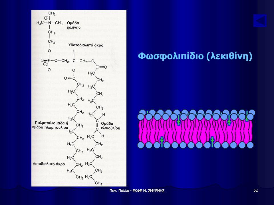 Φωσφολιπίδιο (λεκιθίνη)