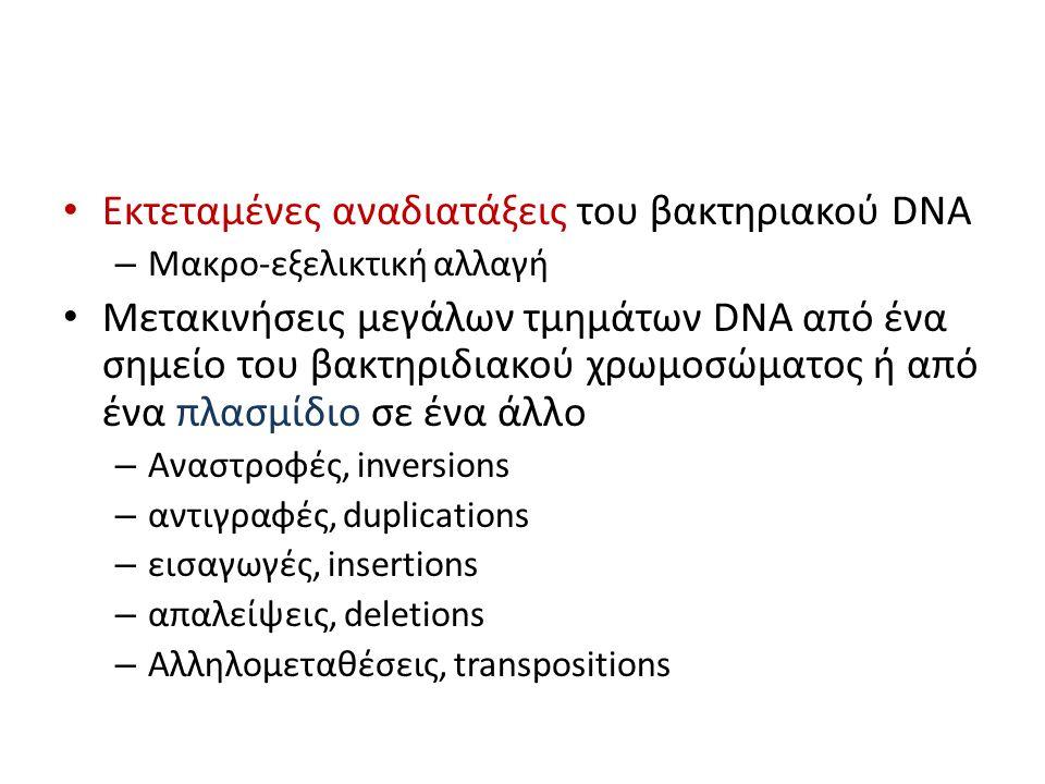 Εκτεταμένες αναδιατάξεις του βακτηριακού DNA