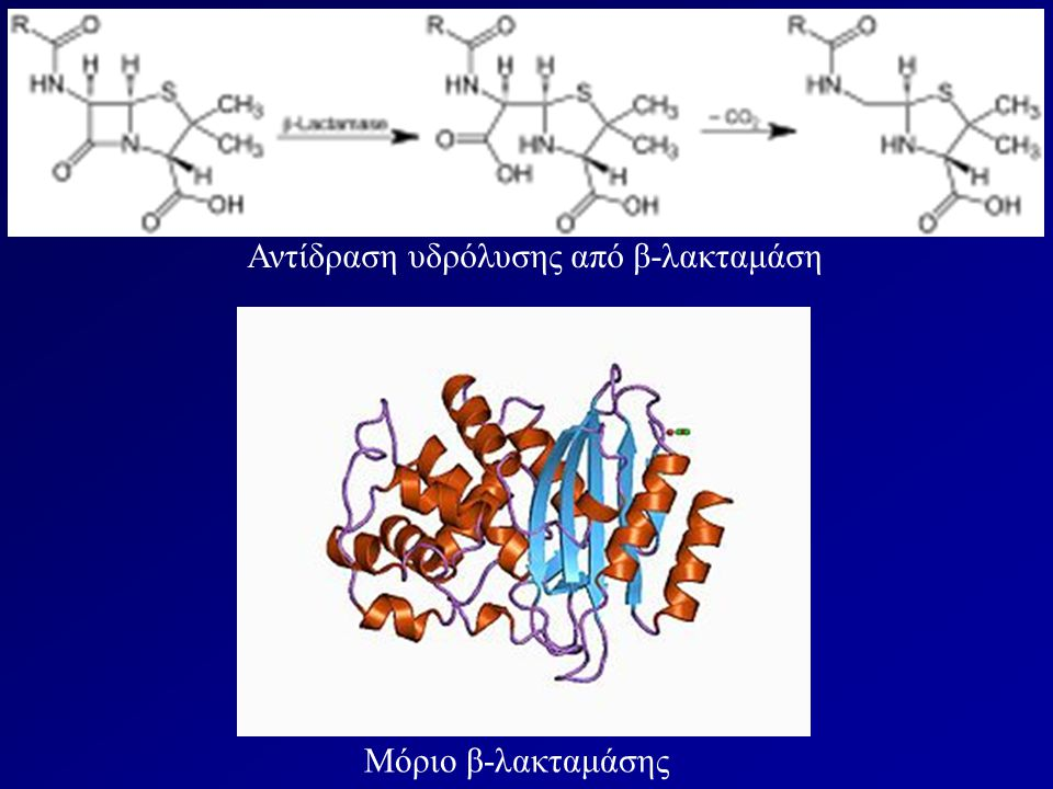 Αντίδραση υδρόλυσης από β-λακταμάση