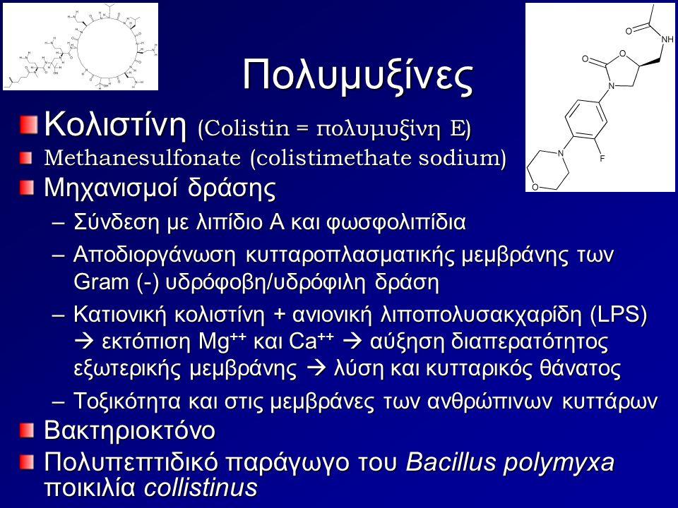 Πολυμυξίνες Κολιστίνη (Colistin = πολυμυξίνη Ε) Μηχανισμοί δράσης