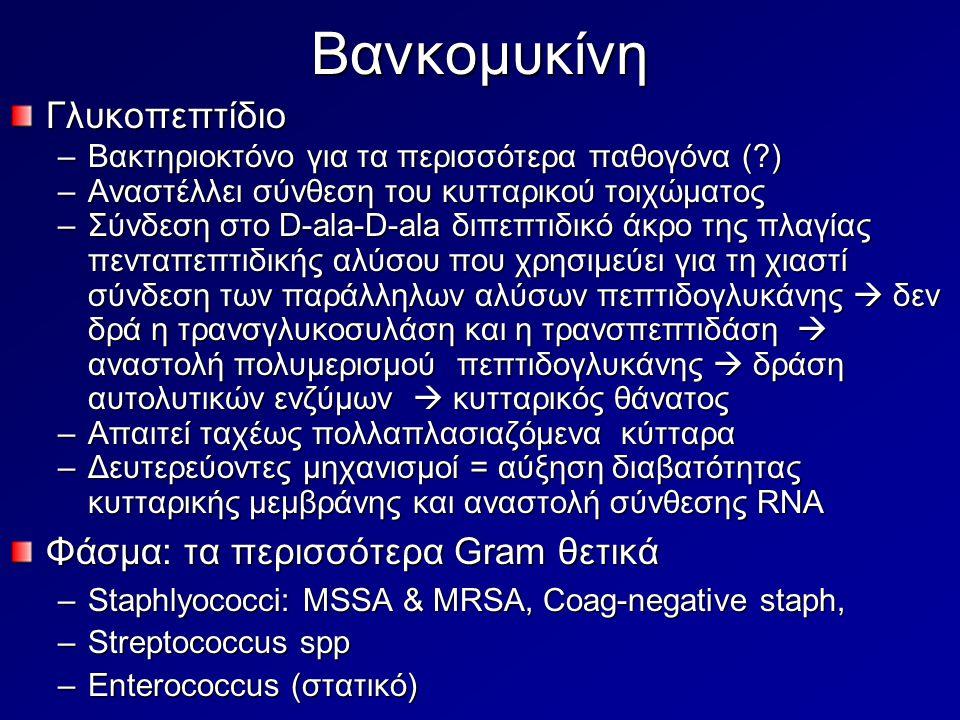 Βανκομυκίνη Γλυκοπεπτίδιο Φάσμα: τα περισσότερα Gram θετικά