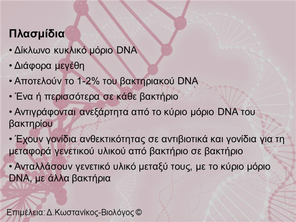Πλασμίδια Δίκλωνο κυκλικό μόριο DNA Διάφορα μεγέθη