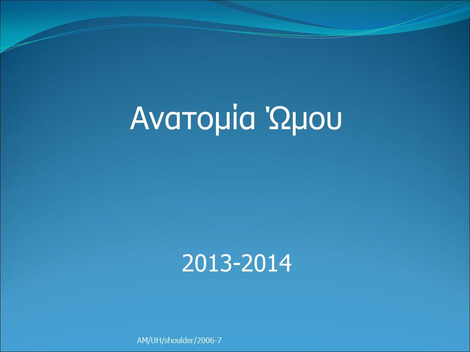 Ανατομία Ώμου 2013-2014 AM/UH/shoulder/2006-7