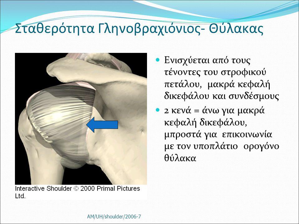 Σταθερότητα Γληνοβραχιόνιος- Θύλακας