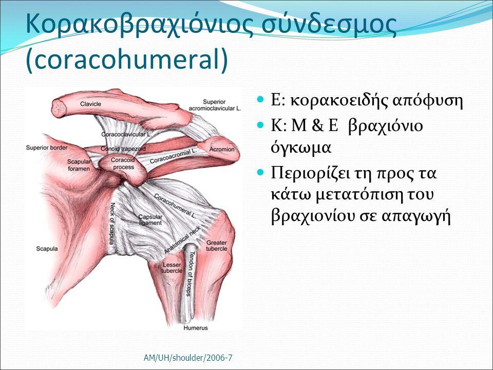 Κορακοβραχιόνιος σύνδεσμος (coracohumeral)