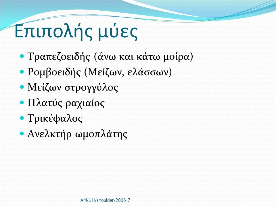 Επιπολής μύες Τραπεζοειδής (άνω και κάτω μοίρα)