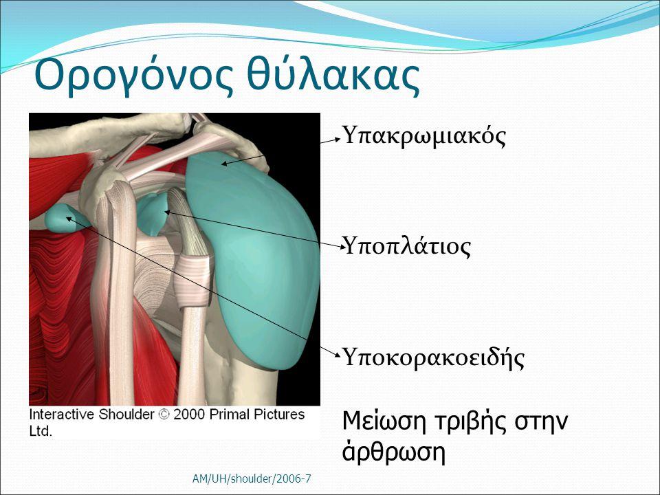 Ορογόνος θύλακας Υπακρωμιακός Υποπλάτιος Υποκορακοειδής
