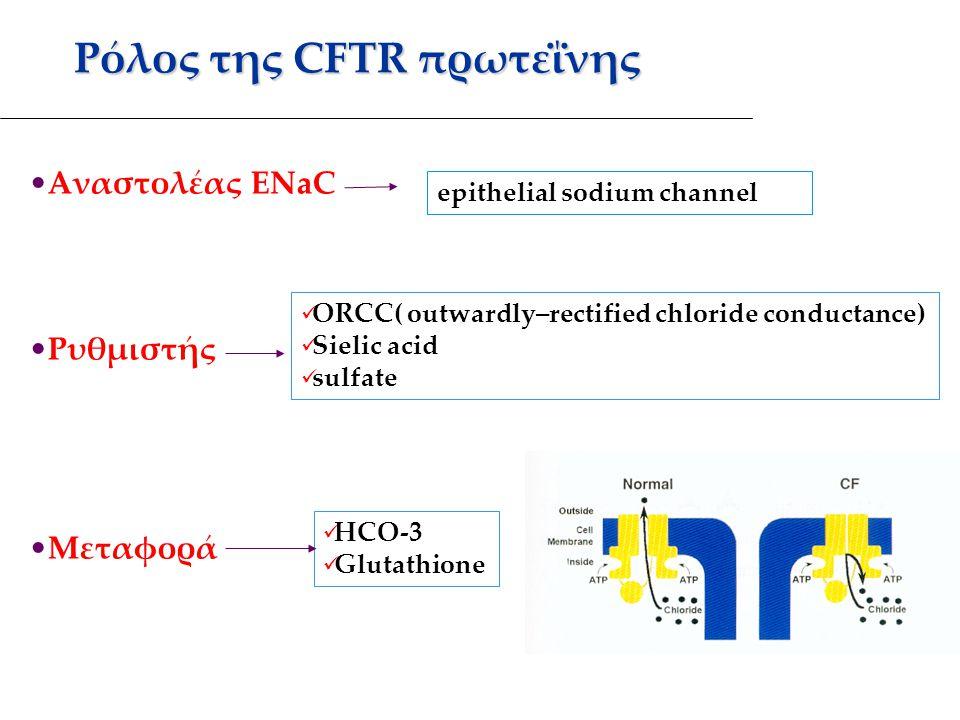 Ρόλος της CFTR πρωτεΐνης