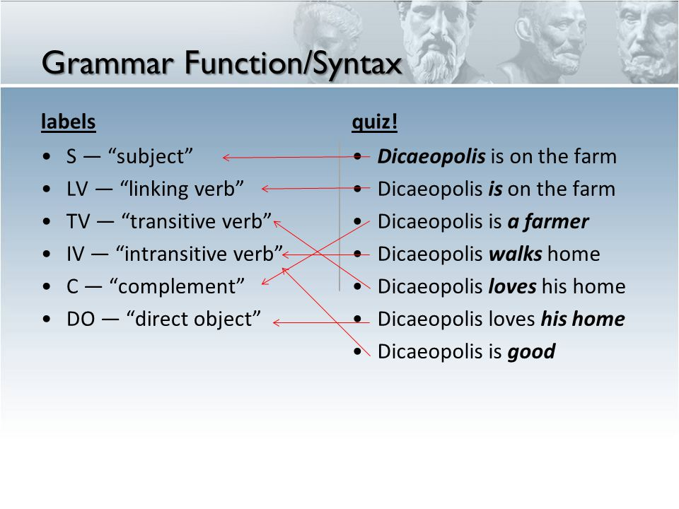 Grammar Function/Syntax
