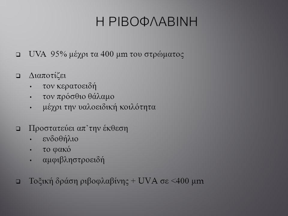 Η ΡΙΒΟΦΛΑΒΙΝΗ UVA 95% μέχρι τα 400 μm του στρώματος Διαποτίζει