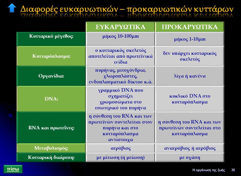 Διαφορές ευκαρυωτικών – προκαρυωτικών κυττάρων