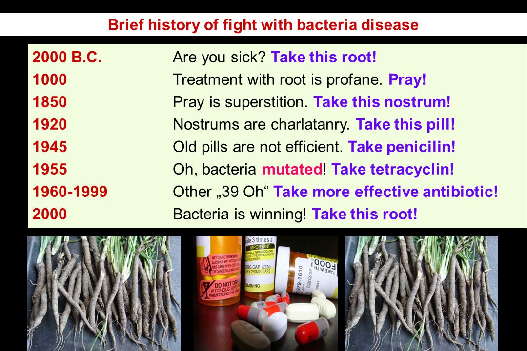 Brief history of fight with bacteria disease