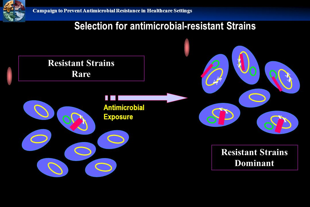 Selection for antimicrobial-resistant Strains