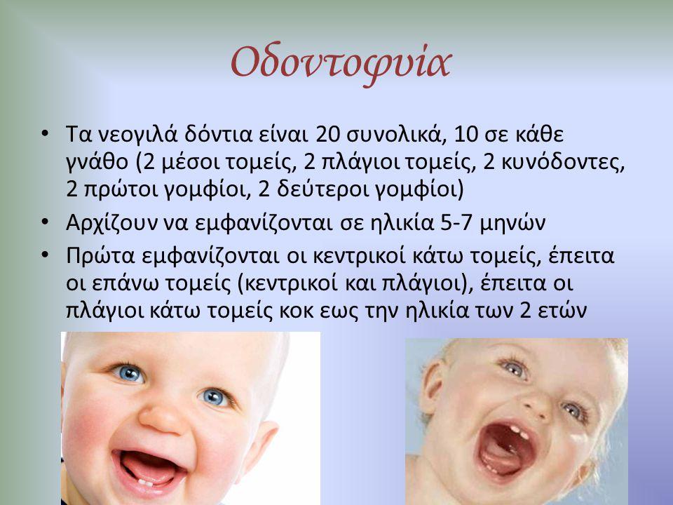 Οδοντοφυία