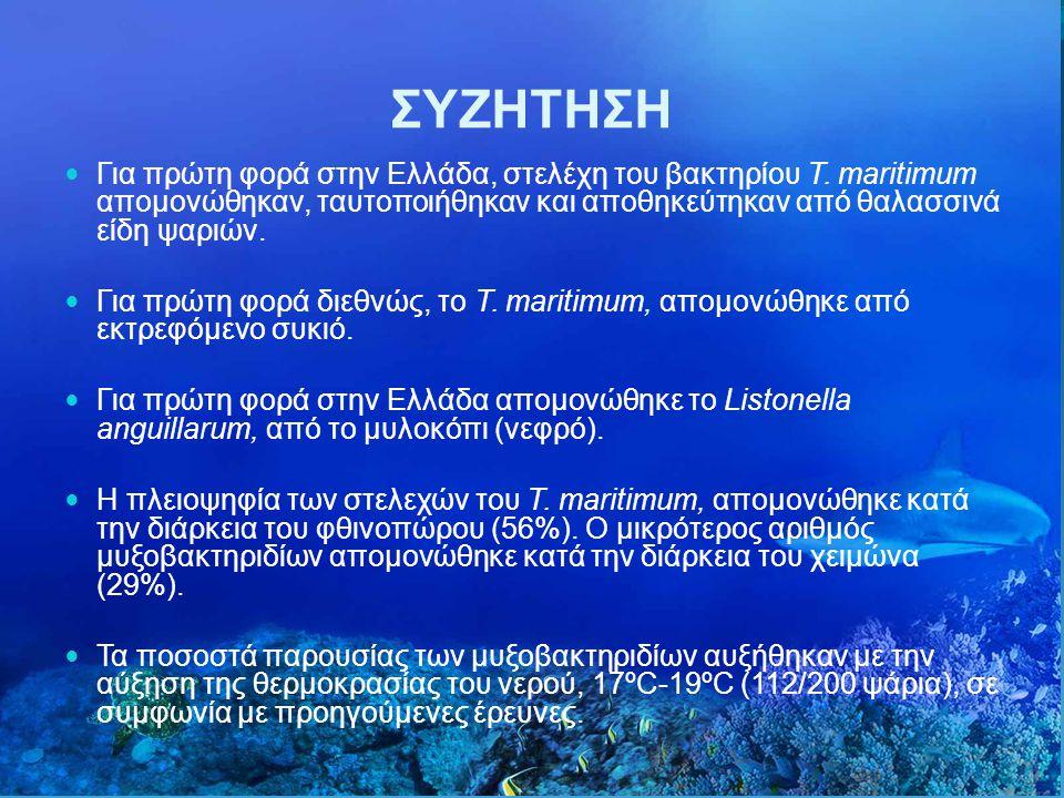 ΣΥΖΗΤΗΣΗ Για πρώτη φορά στην Ελλάδα, στελέχη του βακτηρίου T. maritimum απομονώθηκαν, ταυτοποιήθηκαν και αποθηκεύτηκαν από θαλασσινά είδη ψαριών.