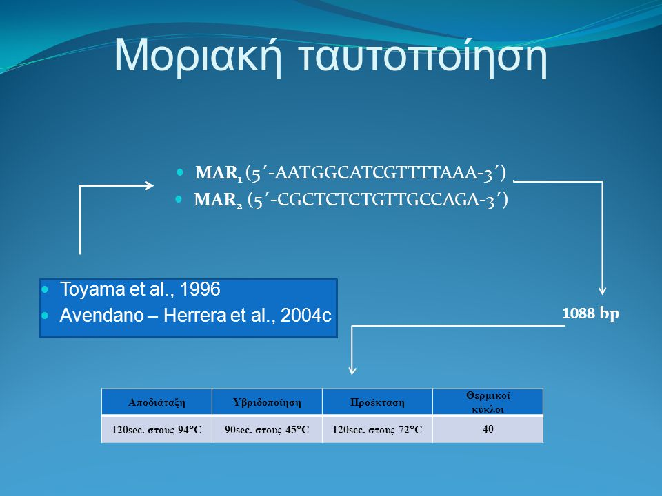 Μοριακή ταυτοποίηση MAR1 (5΄-AATGGCATCGTTTTAAA-3΄)