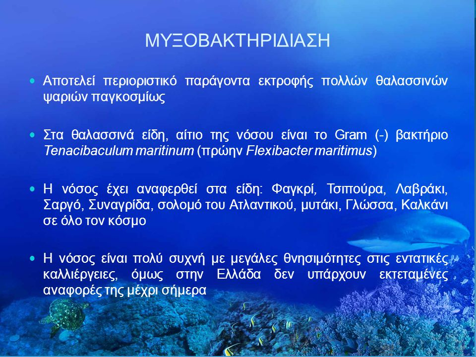 ΜΥΞΟΒΑΚΤΗΡΙΔΙΑΣΗ Αποτελεί περιοριστικό παράγοντα εκτροφής πολλών θαλασσινών ψαριών παγκοσμίως.