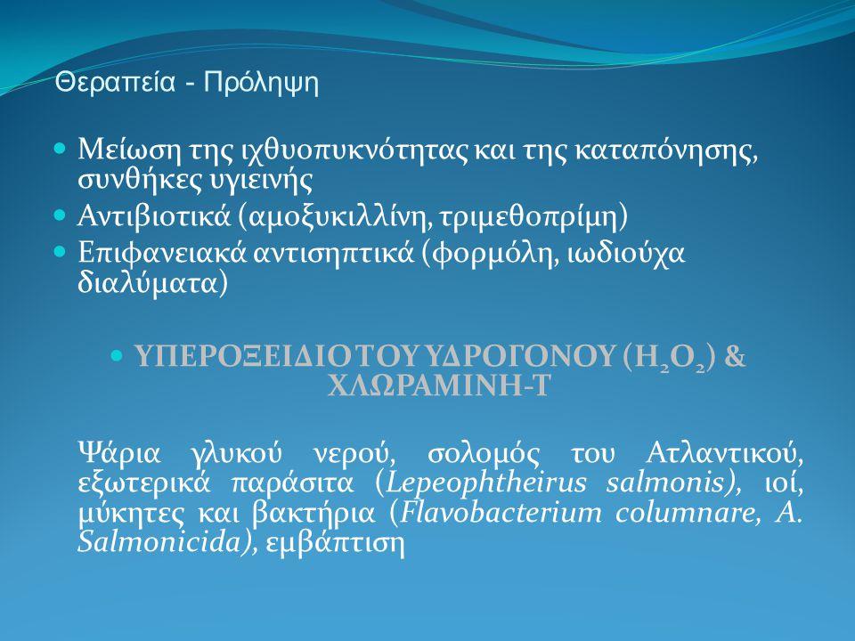 ΥΠΕΡΟΞΕΙΔΙΟ ΤΟΥ ΥΔΡΟΓΟΝΟΥ (H2O2) & ΧΛΩΡΑΜΙΝΗ-Τ