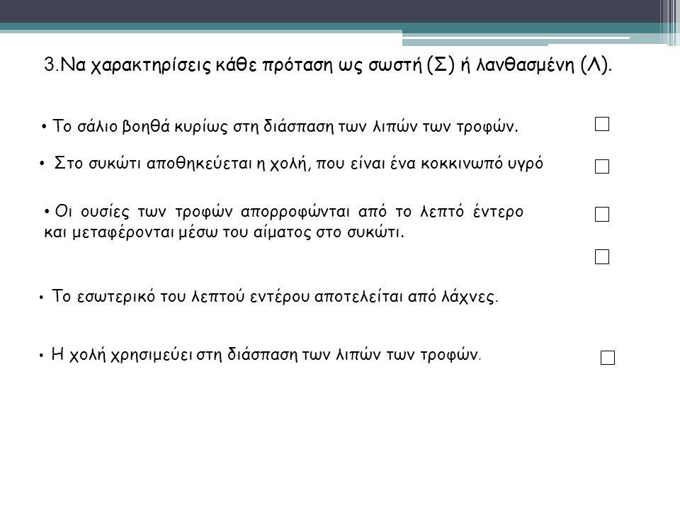 3.Να χαρακτηρίσεις κάθε πρόταση ως σωστή (Σ) ή λανθασμένη (Λ).