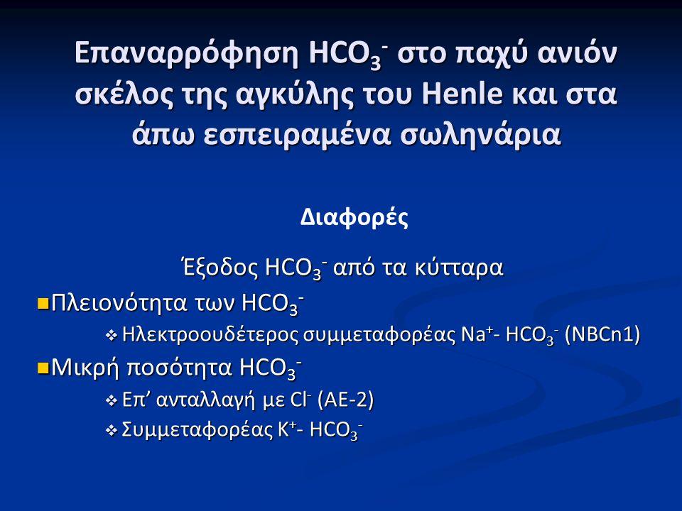 Έξοδος HCO3- από τα κύτταρα