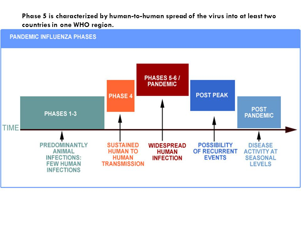 Phase 5 is characterized by human-to-human spread of the virus into at least two countries in one WHO region.