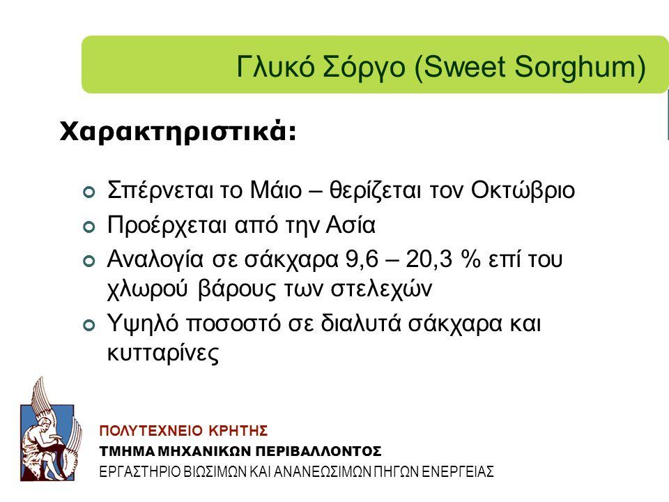 Γλυκό Σόργο (Sweet Sorghum)