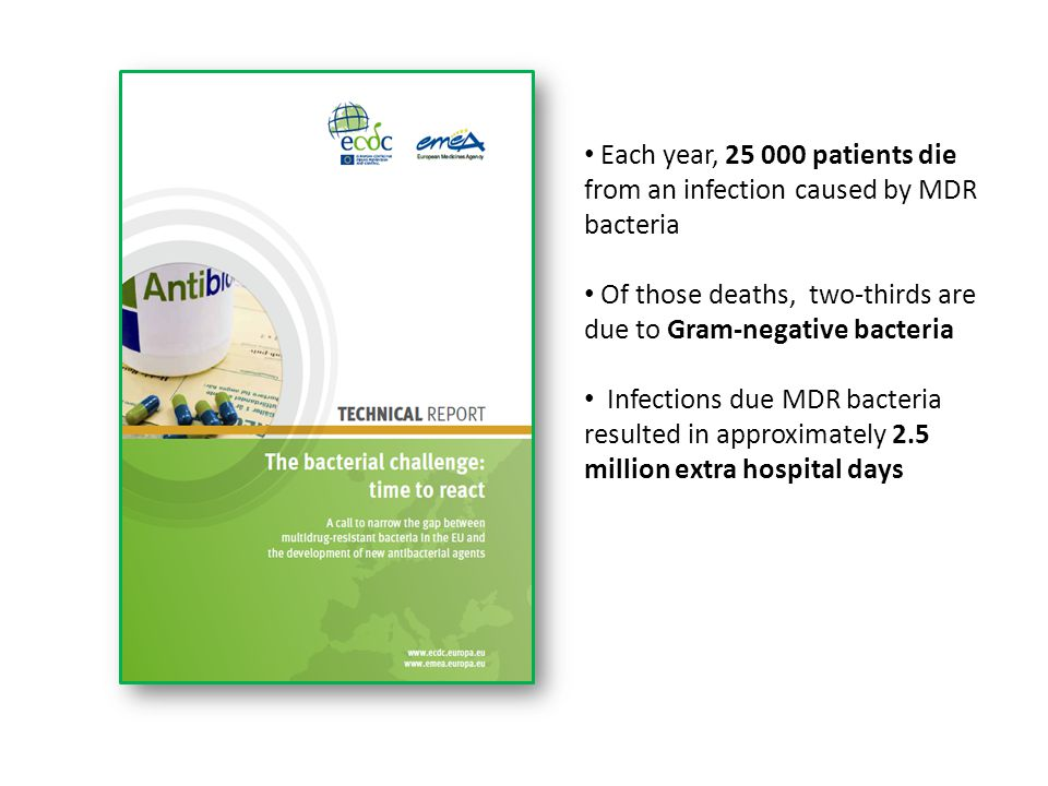 Of those deaths, two-thirds are due to Gram-negative bacteria